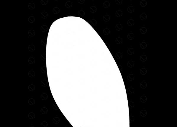 31100.jpg