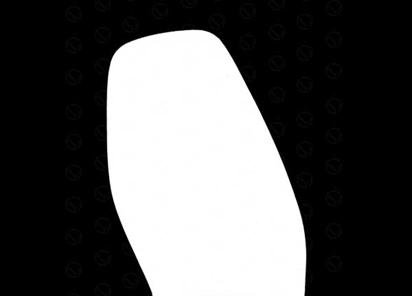 31101.jpg